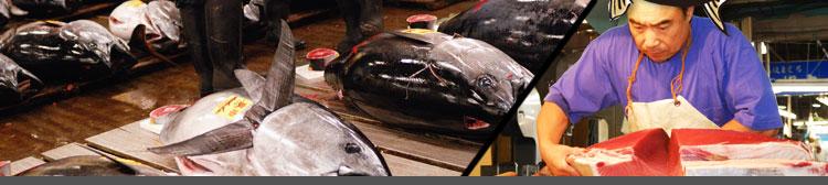マグロの協立水産・メイン画像2